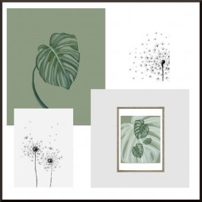 Plakater Planter & Blomster